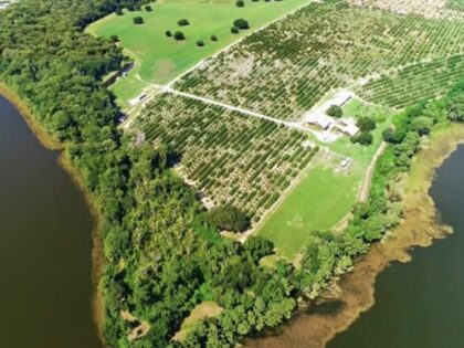 265 Acre Drake's Point Sells for $8M